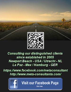 Meta Consultants